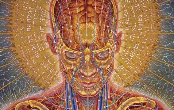 humanidad esta a un paso de lograr inmortalidad 2
