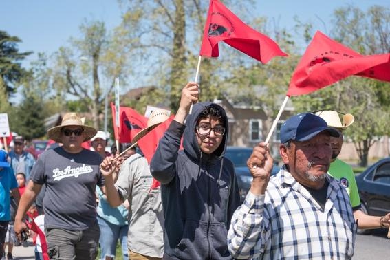 teresa romero inmigrante mexicana dirigira sindicato ufw 2