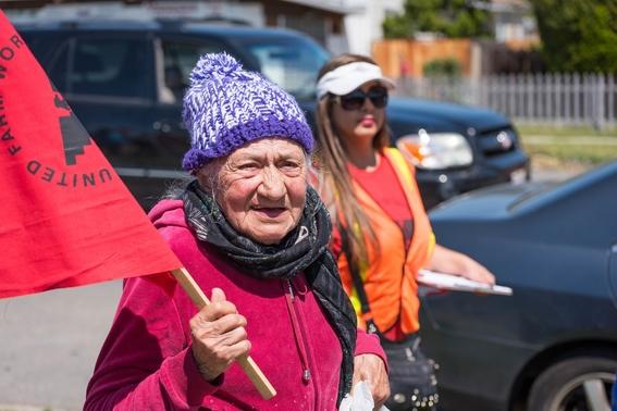 teresa romero inmigrante mexicana dirigira sindicato ufw 4