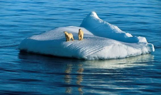 transformacion de los ecosistemas por el cambio climatico 2