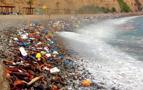 colillas de cigarro contaminan el mar mas que popotes 2