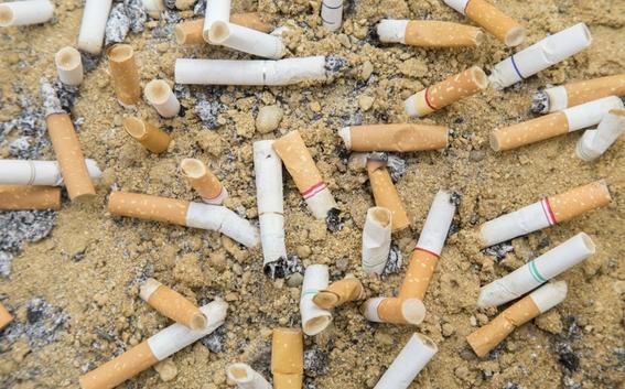 colillas de cigarro contaminan el mar mas que popotes 1
