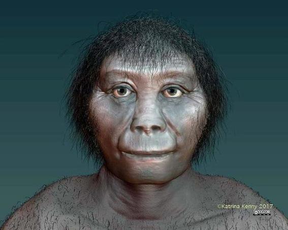 homo floresiensis o hobbit hominido enano que habito la tierra 2
