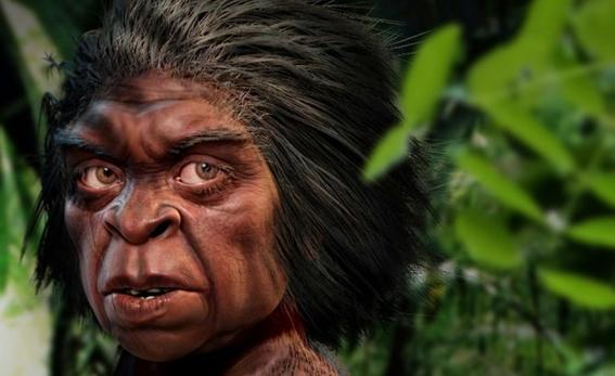 homo floresiensis o hobbit hominido enano que habito la tierra 1