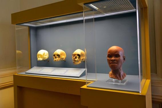 incendio del museo nacional de brasil las piezas perdidas 2