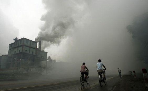 efectos de la contaminacion afecta la inteligencia 1