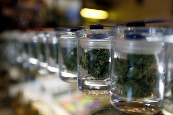 cannabidiol de la marihuana combate la psicosis 2