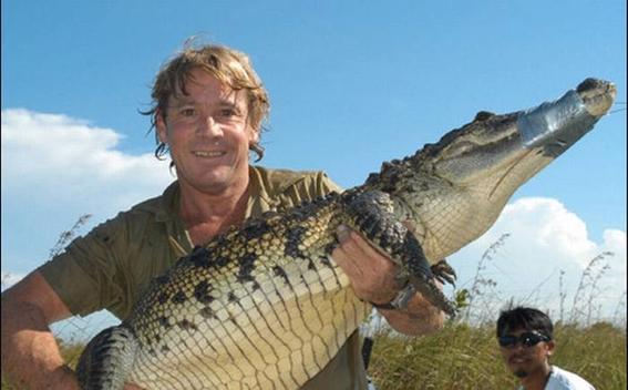 steve irwin cazador de cocodrilos 2