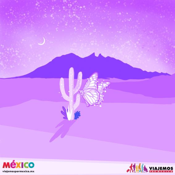artistas mexicanas 29