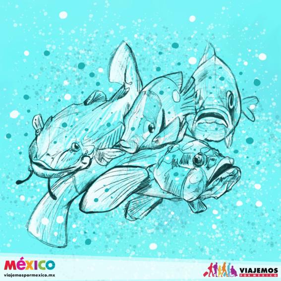 artistas mexicanas 30