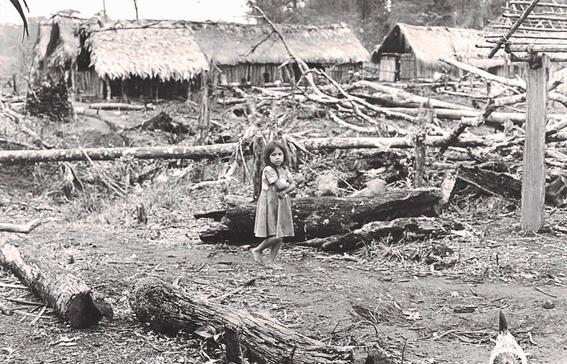genocidio en guatemala un ejercito asesina a indigenas mayas 1