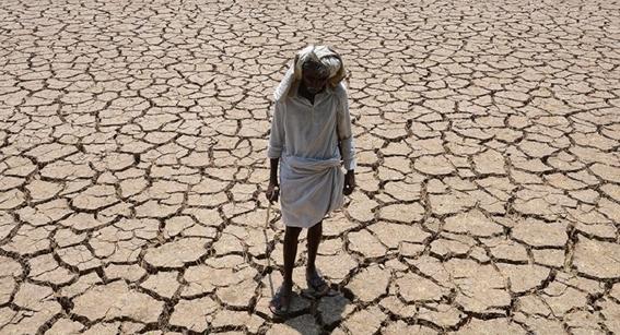 como afecta el cambio climatico al hambre 5