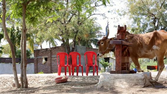 fotos de shani shingnapur en india donde no hay puertas 8