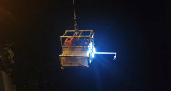 descubren tres nuevas especies en la profundidad del oceano 1