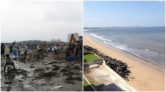 la playa que paso de ser un basurero a un hogar de tortugas 4