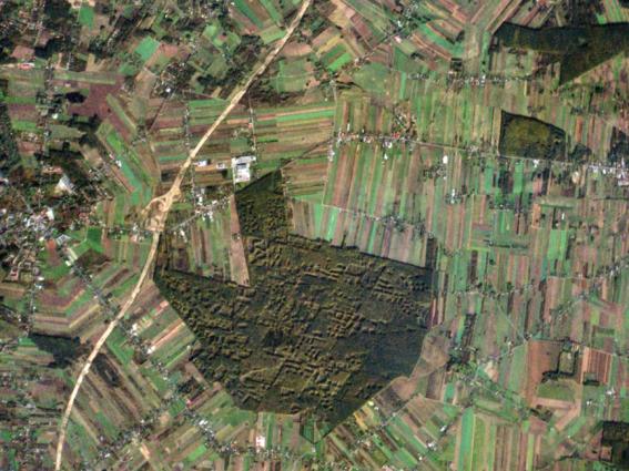 satelite dove la herramienta clave para la causa ambientalista 2