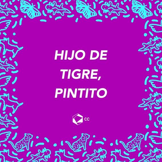 frases que todo mexicano debe saber 6
