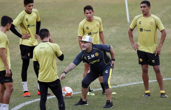 maradona director tecnico dorados 2