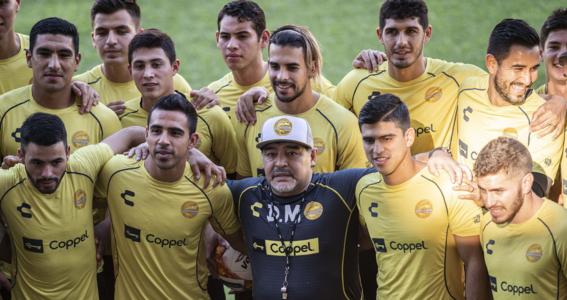 maradona director tecnico dorados 3
