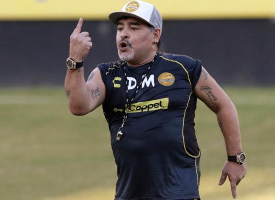 maradona director tecnico dorados 4