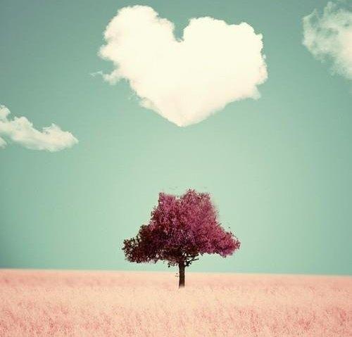 poemas de amor para decir te amo 3
