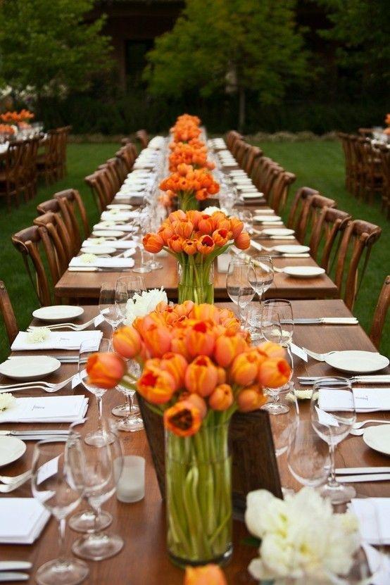 significado de los tulipanes 6
