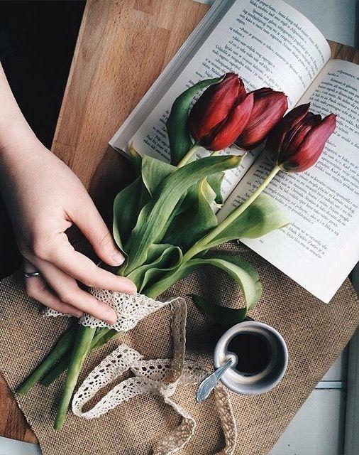 significado de los tulipanes 3
