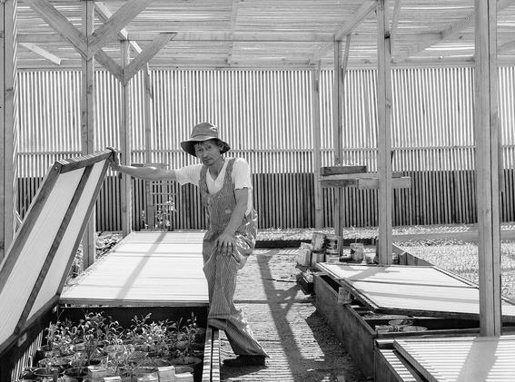fotos campos de concentracion japoneses en estados unidos 22