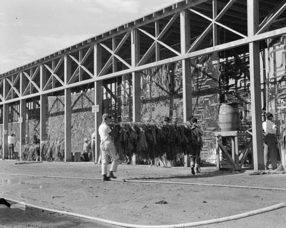fotos campos de concentracion japoneses en estados unidos 24