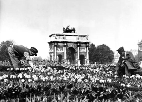 photos of paris in the 20s 19