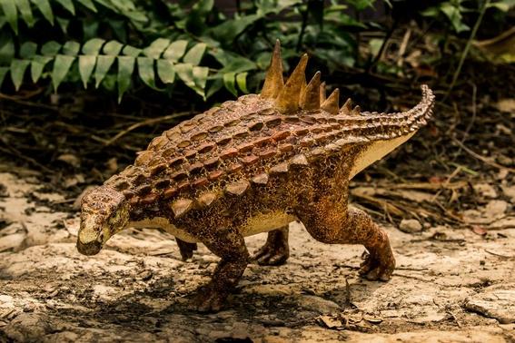 encuentran nueva especie de dinosaurio en mexico 2