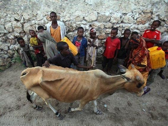 inteligencia artificial para prevenir hambrunas 1