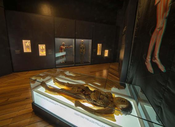 museos que abren en lunes 9