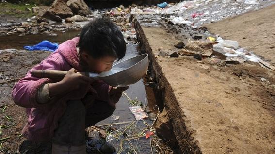 la desaparicion de selvas nos dejara sin agua 2