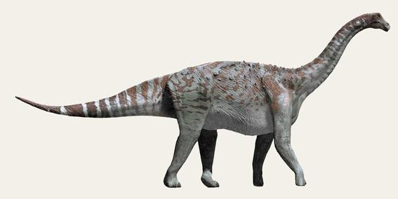 descubren dinosaurio que pesaba mas de once mil kilos 1