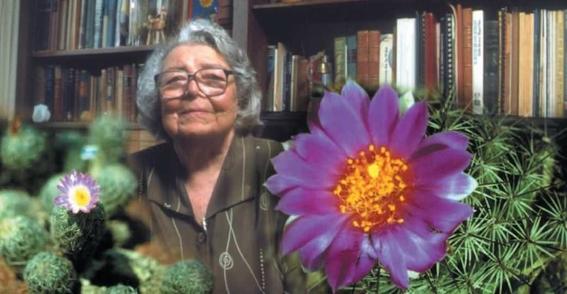 google dedica doogle a la botanica mexicana helia bravo hollis 1
