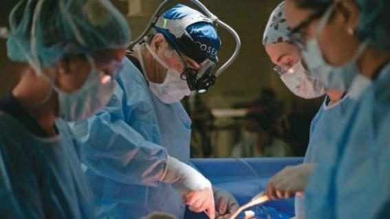 donacion de organos en mexico 4