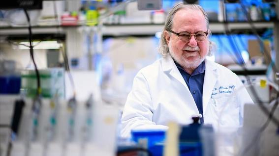 la inmunoterapia reemplazara la quimioterapia para tratar el cancer 4