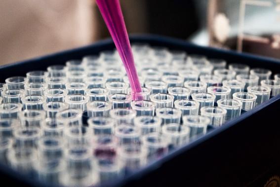 la inmunoterapia reemplazara la quimioterapia para tratar el cancer 3