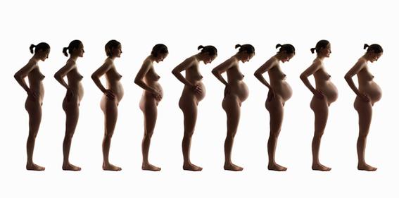 embarazo semana a semana 4