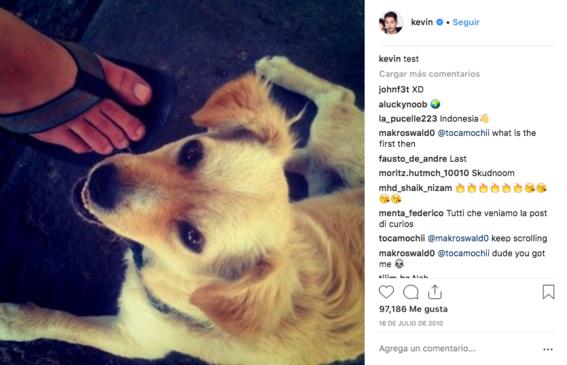 primera foto en instagram es un perro mexicano 1