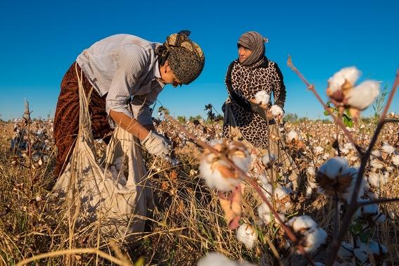 mujeres esterilizadas contra su voluntad uzbekistan 4