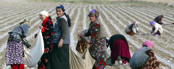mujeres esterilizadas contra su voluntad uzbekistan 5