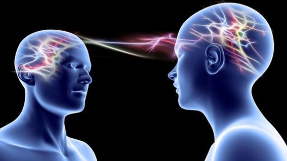 red de cerebros conectados para compartir pensamientos brainnet 1