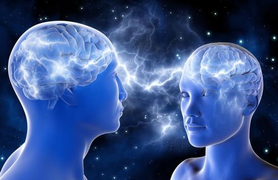 red de cerebros conectados para compartir pensamientos brainnet 4