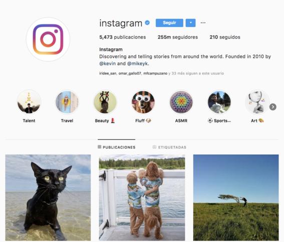 crecimiento numero de usuario instagram historia 11