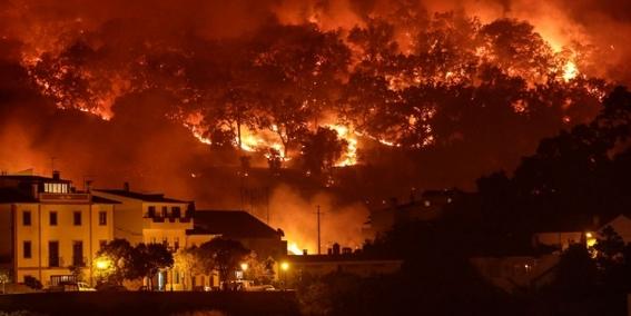 publican informe que alerta sobre crisis ambiental en 2040 1