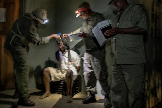 fotos caza furtiva de cuerno de rinoceronte en africa 12