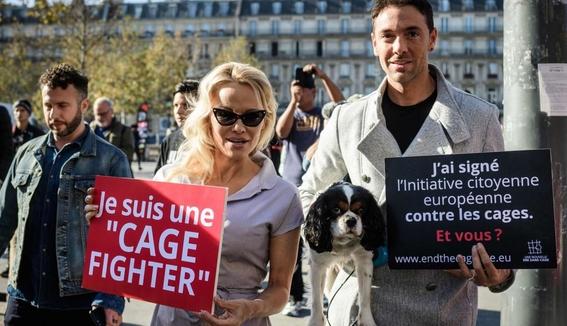 pamela anderson se encierra en una jaula para denunciar violencia animal 1