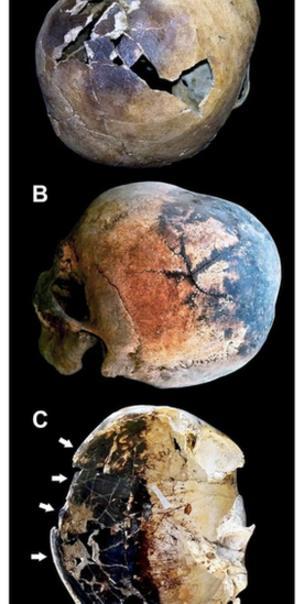 cientificos explicaron la muerte de los habitantes de pompeya 2